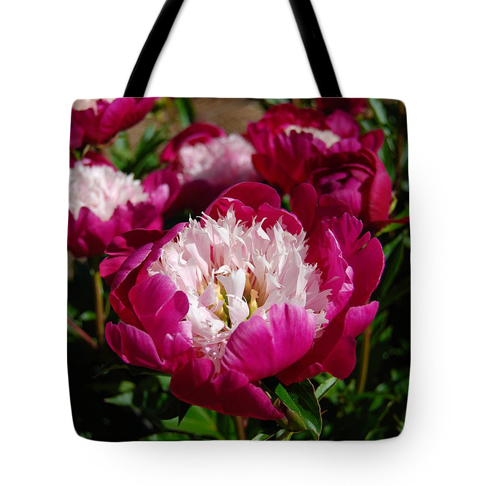 Red Peony Flower Tote Bag featuring the digital art Red Peony Flowers Series 4 by Eva Kaufman