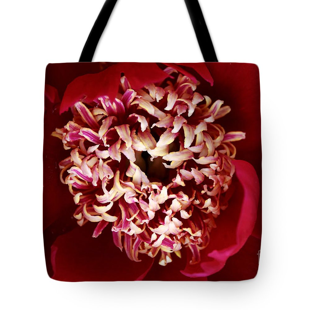 Red Peony Flower Tote Bag featuring the digital art Red Peony Flowers Series 5 by Eva Kaufman
