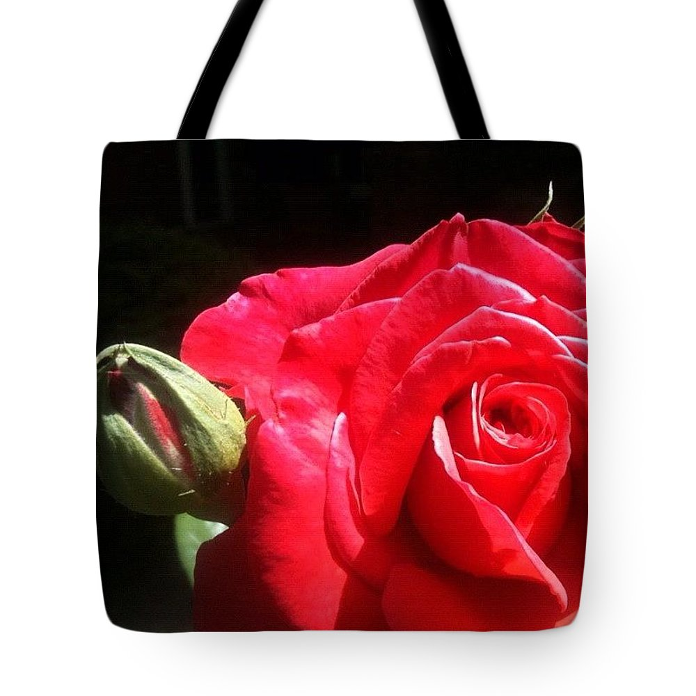 Rose Tote Bag featuring the photograph Red Red Rose by Anna Porter