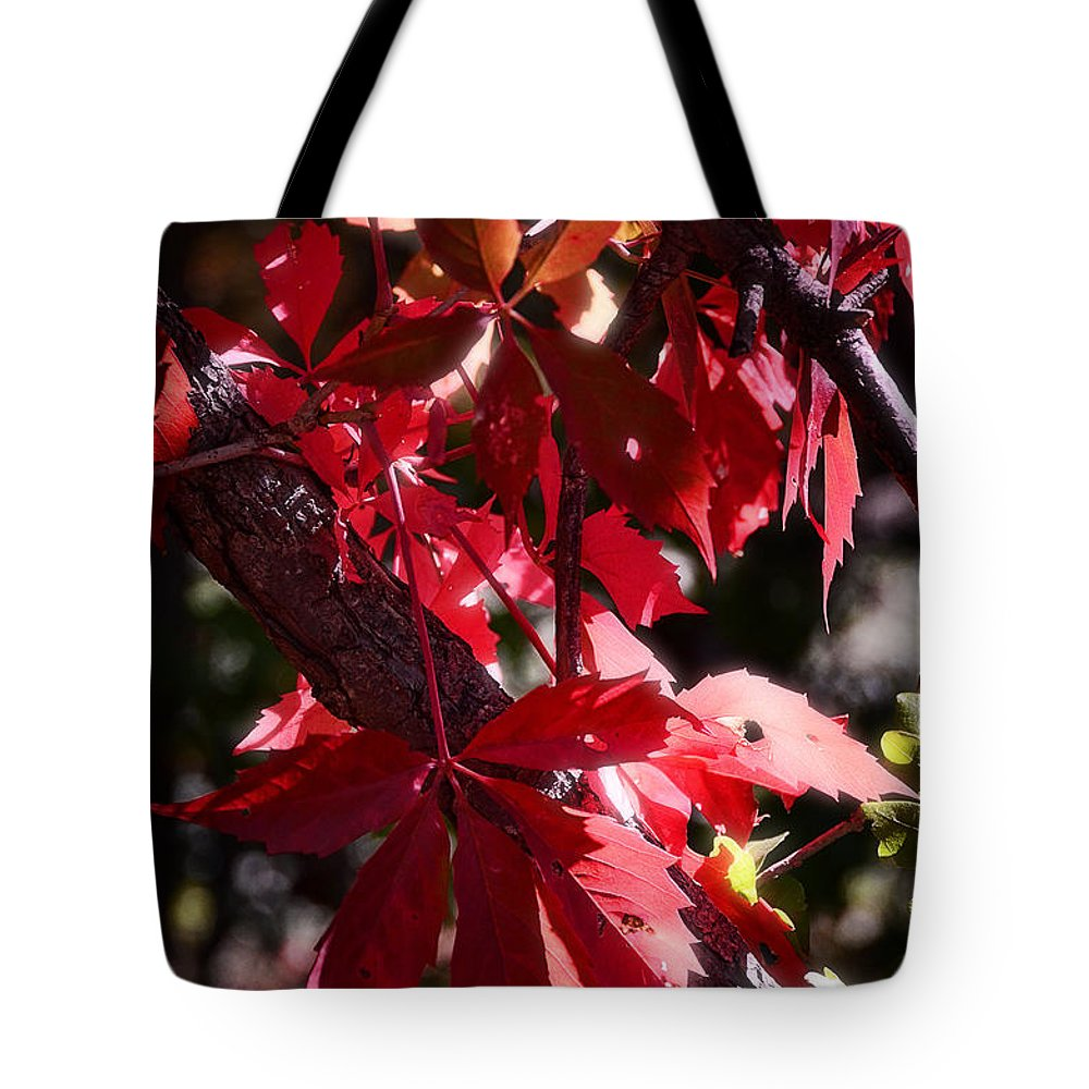 Red Tote Bag featuring the photograph RED by Saija Lehtonen