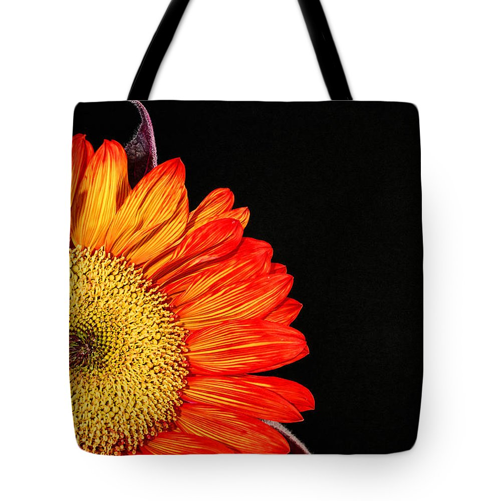 Red Sunflower Tote Bag featuring the photograph Red Sunflower IIi by Saija Lehtonen