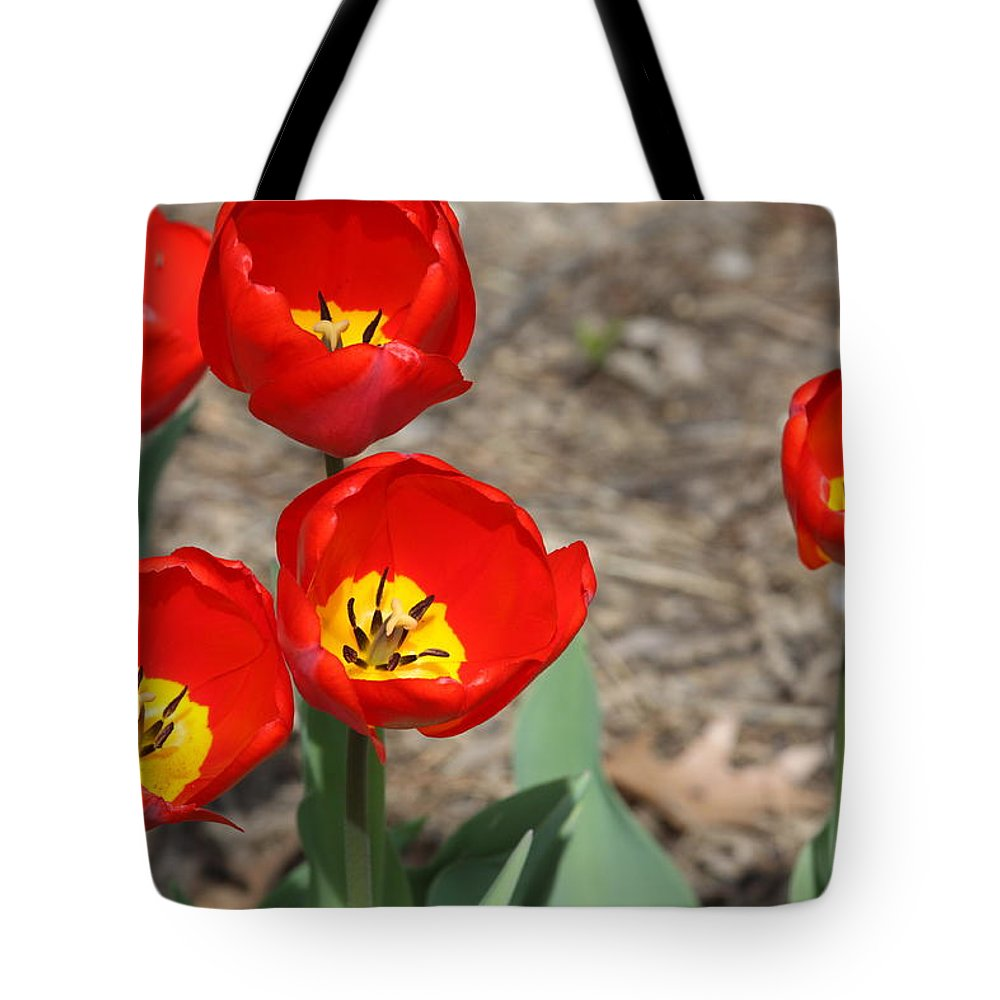 Floral Tote Bag featuring the photograph Red Tulips by Andrea Lynch