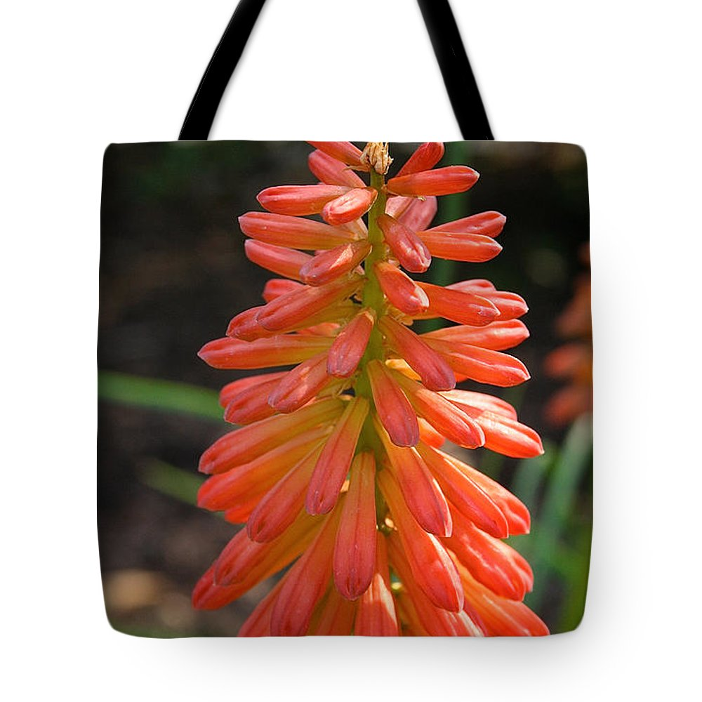 Flower Tote Bag featuring the photograph Redhot Popsicle by Susan Herber