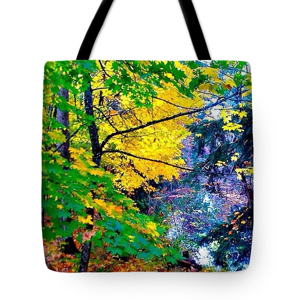 Reed College Canyon Tote Bag featuring the photograph Reed College Canyon Fall Leaves II by Anna Porter