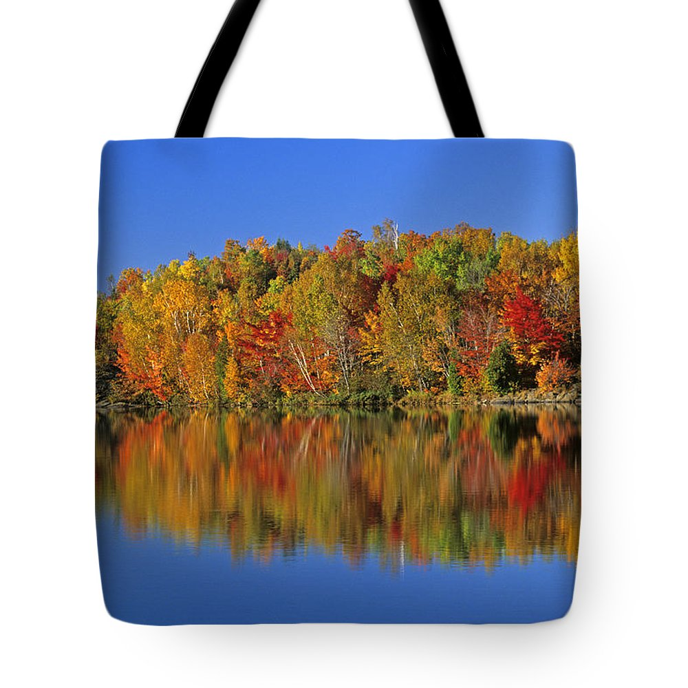 Color Image Tote Bag featuring the photograph Reflected Autumn Trees In Simon Lake by Mike Grandmailson