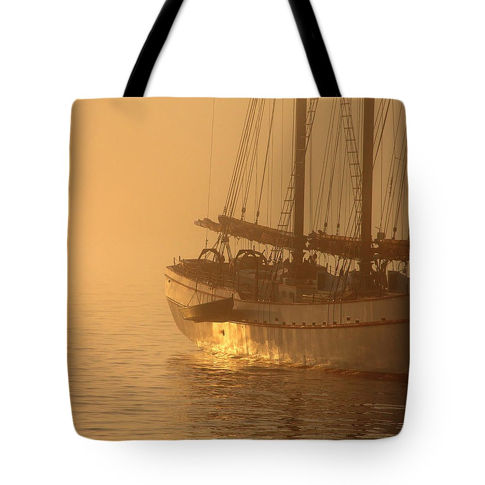 Sunrise Tote Bag featuring the photograph Resting In The Morning Sun by Brian Pflanz