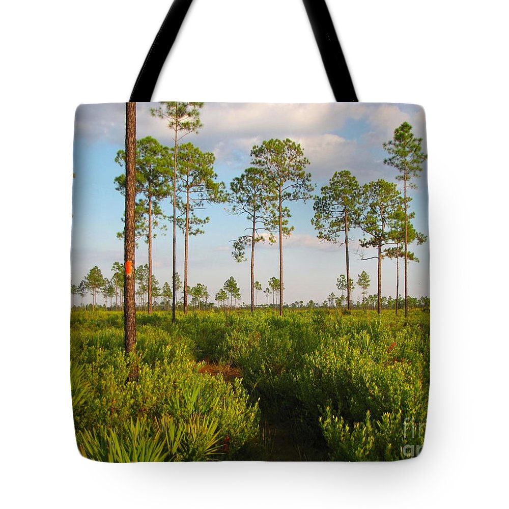 Florida Trail Tote Bag featuring the photograph Return Loop Of The Florida Trail by Barbara Bowen