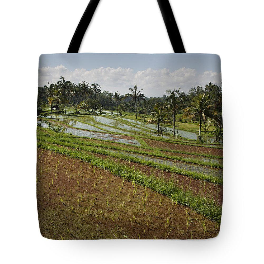 Blue Sky Tote Bag featuring the photograph Rice Fields Jatiluwih, Bali, Indonesia by Huy Lam