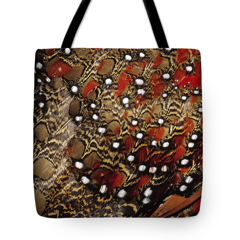 Nis Tote Bag featuring the photograph Ring-necked Pheasant Phasianus by Jan Van Arkel