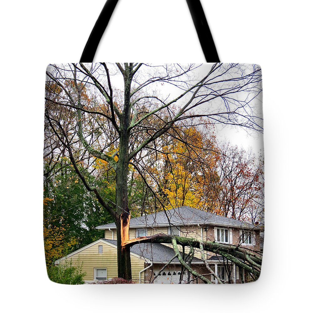 Wind Tote Bag featuring the photograph Ripping Limbs by Art Dingo