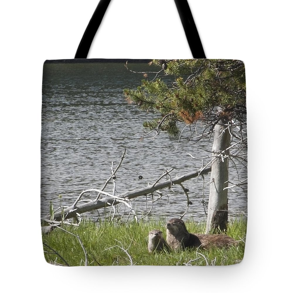 River Otter Tote Bag featuring the photograph River Otter by Belinda Greb