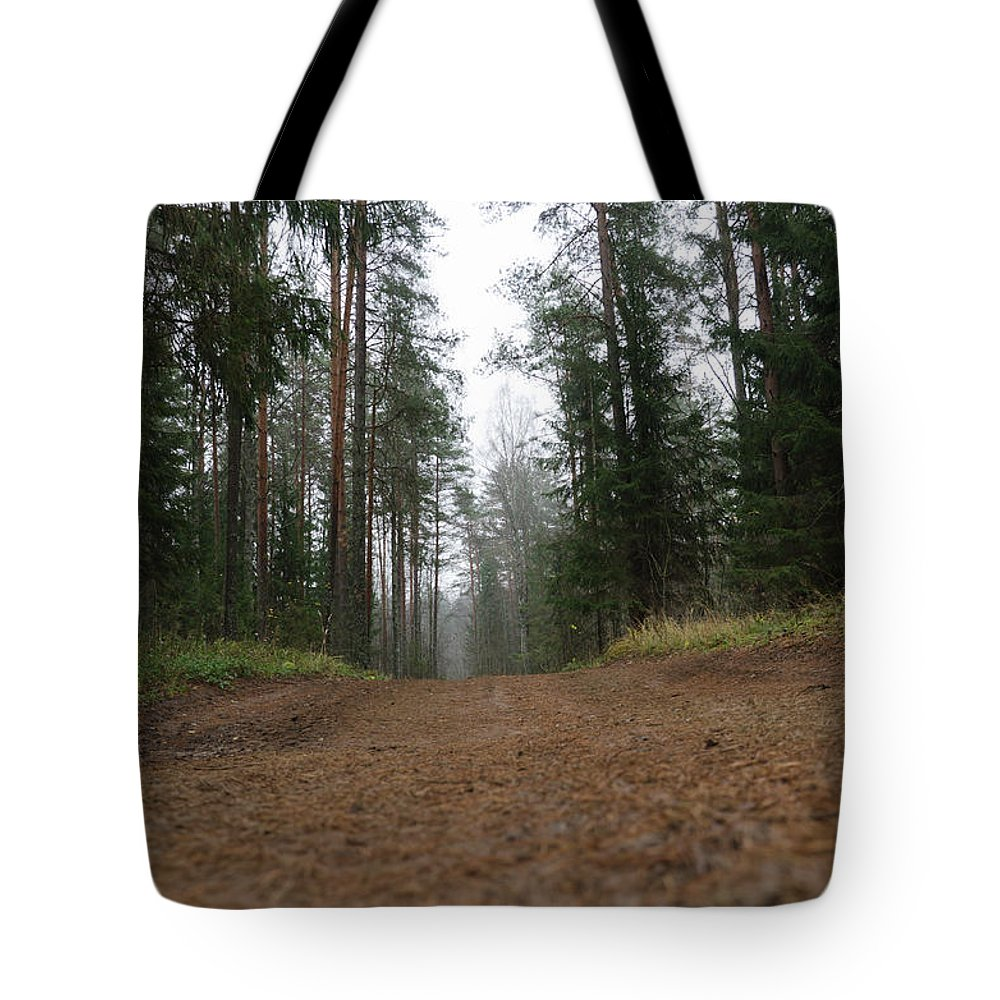 Autumn Tote Bag featuring the photograph Road In A Pine Grove by Michael Goyberg
