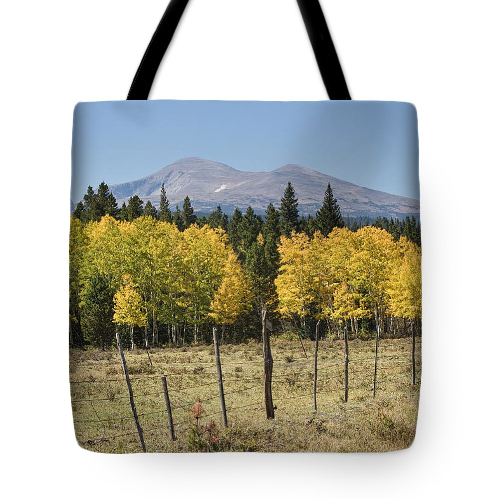 Colorado Tote Bag featuring the photograph Rocky Mountain High Country Autumn Fall Foliage Scenic View by James BO Insogna