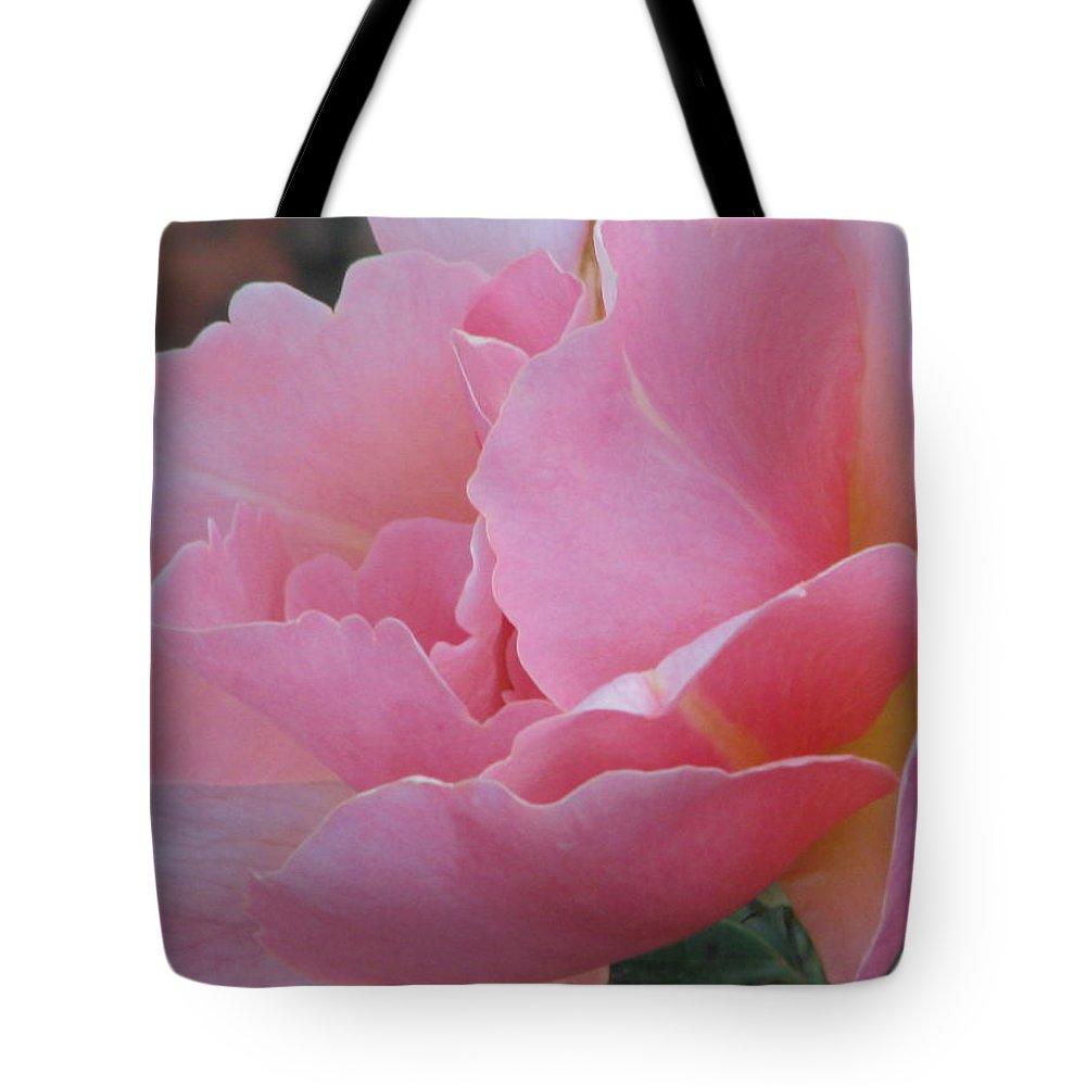 Sviatoslav Tote Bag featuring the photograph Rose 01 by Sviatoslav Alexakhin
