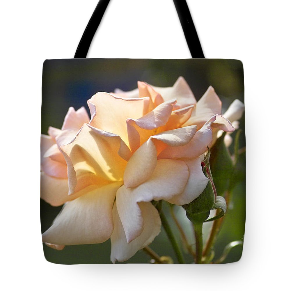 Rose Tote Bag featuring the photograph Rose Flower Series 15 by Heiko Koehrer-Wagner
