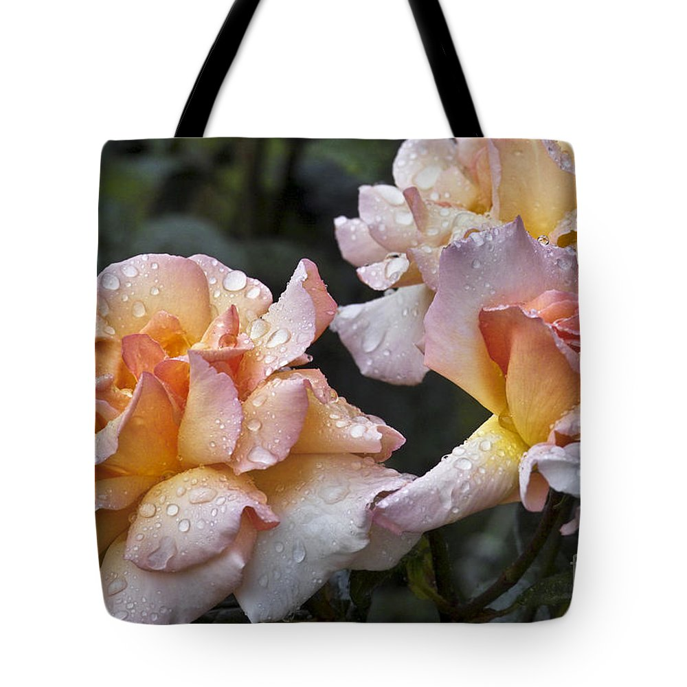 Rose Tote Bag featuring the photograph Rose Flower Series 7 by Heiko Koehrer-Wagner