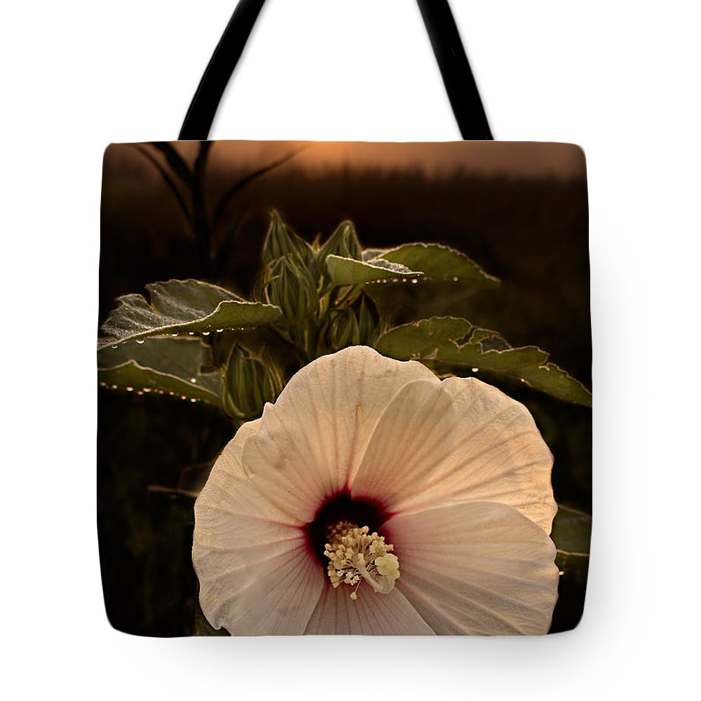 2011 Tote Bag featuring the photograph Rose Mallow by Robert Charity