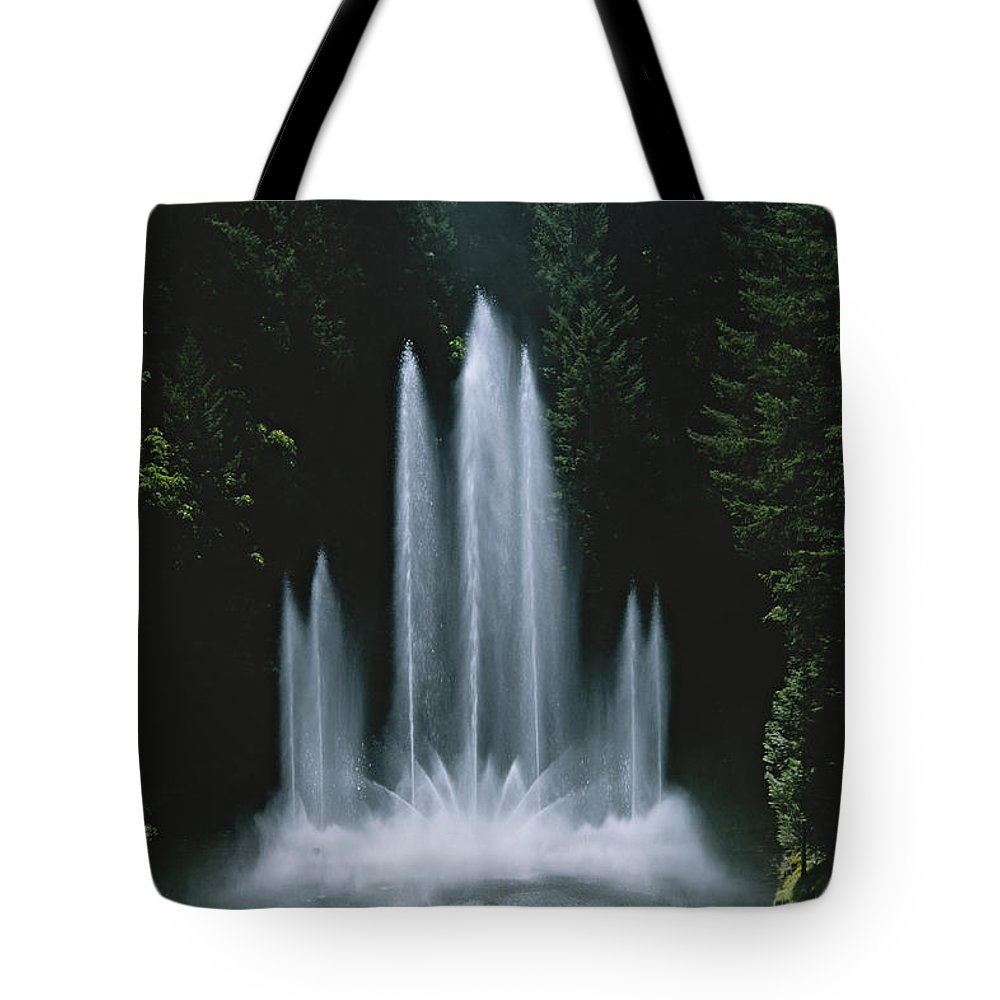 North America Tote Bag featuring the photograph Ross Fountain Dancing In Front Of Lush by Todd Gipstein