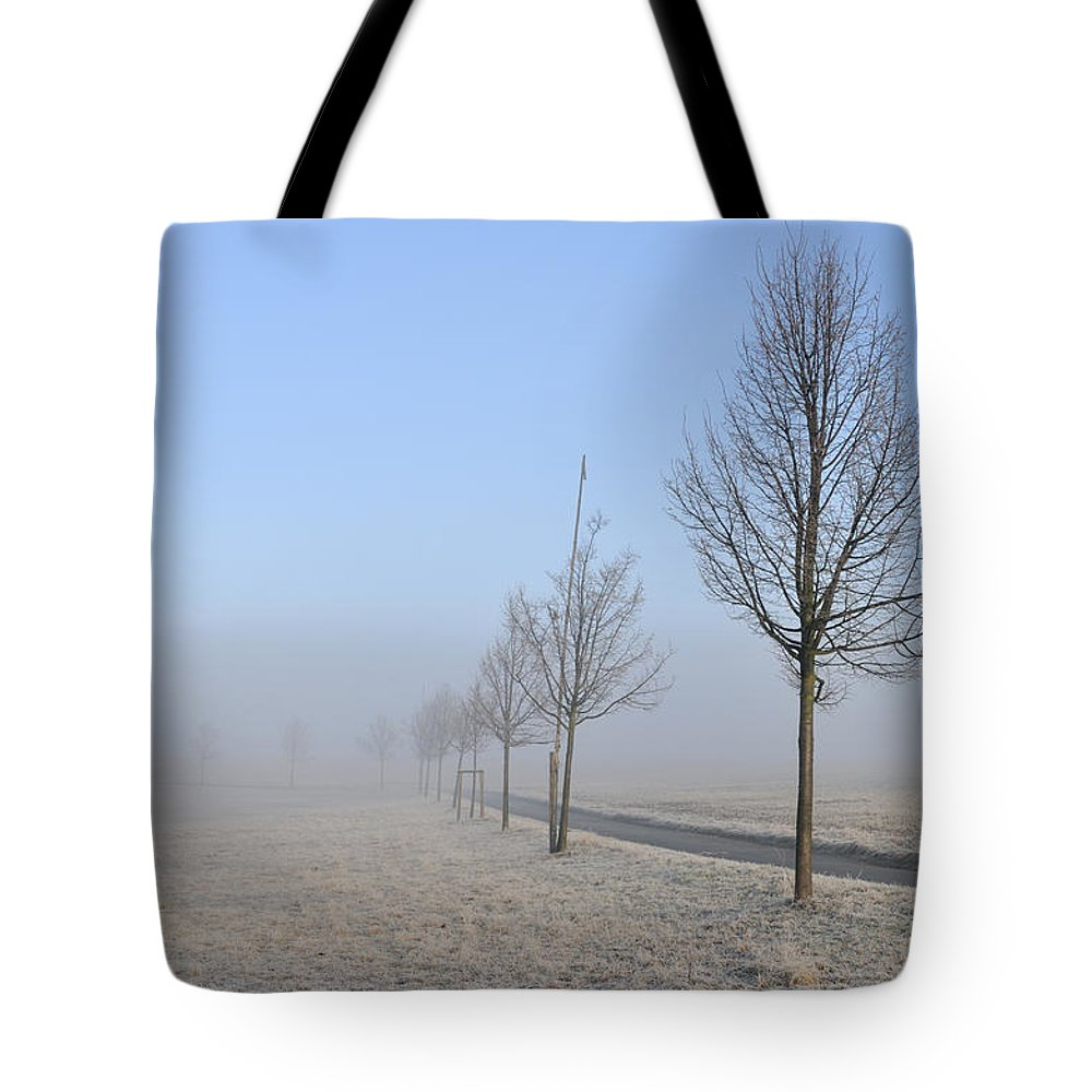 Trees Tote Bag featuring the photograph Row Of Trees In The Morning by Matthias Hauser