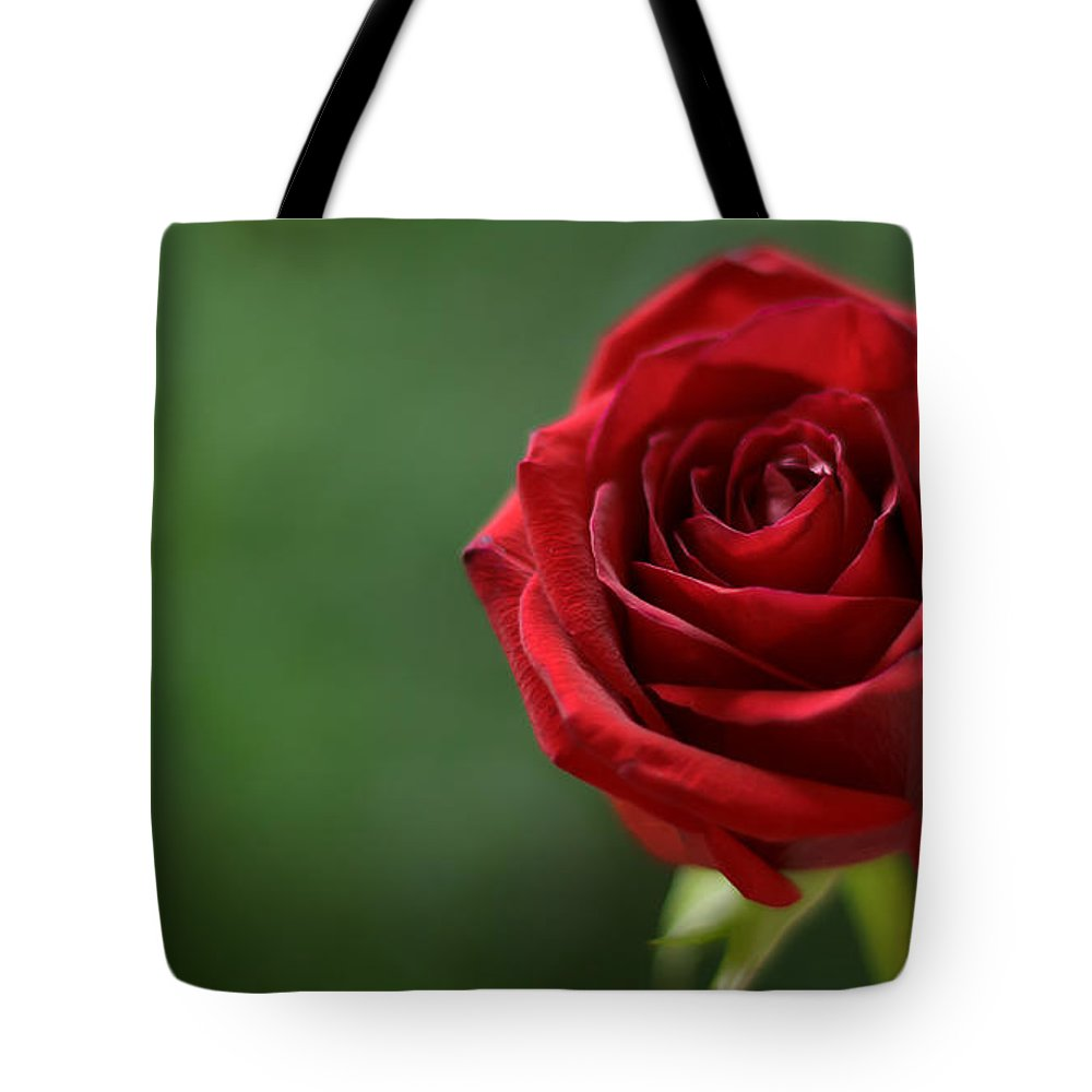 Red Rose Tote Bag featuring the photograph Ruby Red by Robin Konarz