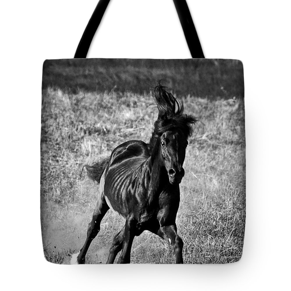 Running Free Tote Bag featuring the photograph Running Free by Wes and Dotty Weber