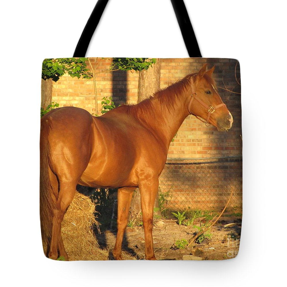 Horse Tote Bag featuring the photograph Rusty Standing Proud by Michelle Powell