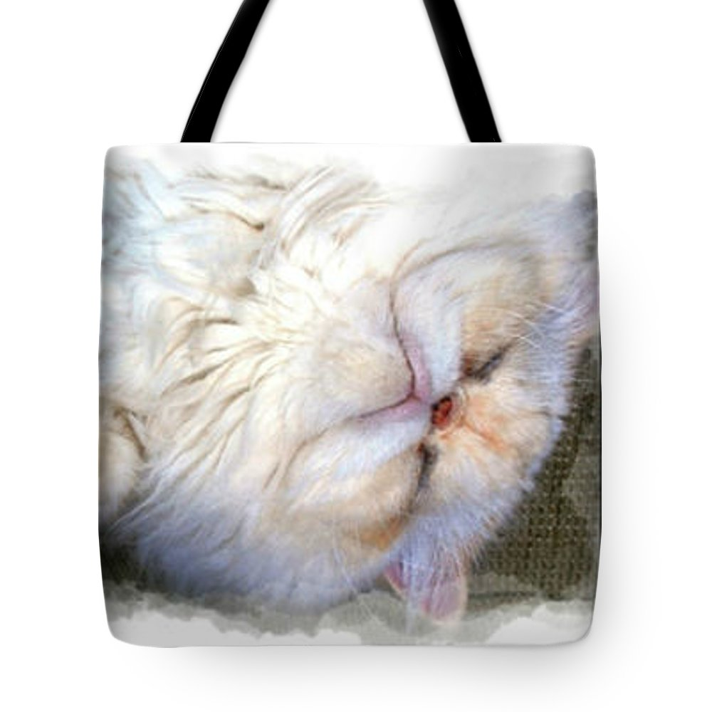 Cat Tote Bag featuring the photograph Sam by Donna Bentley