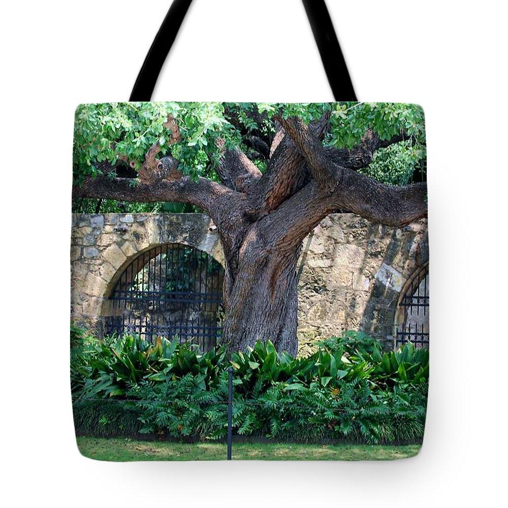 Tree Tote Bag featuring the photograph San Antonio Shade by Judy Hall-Folde