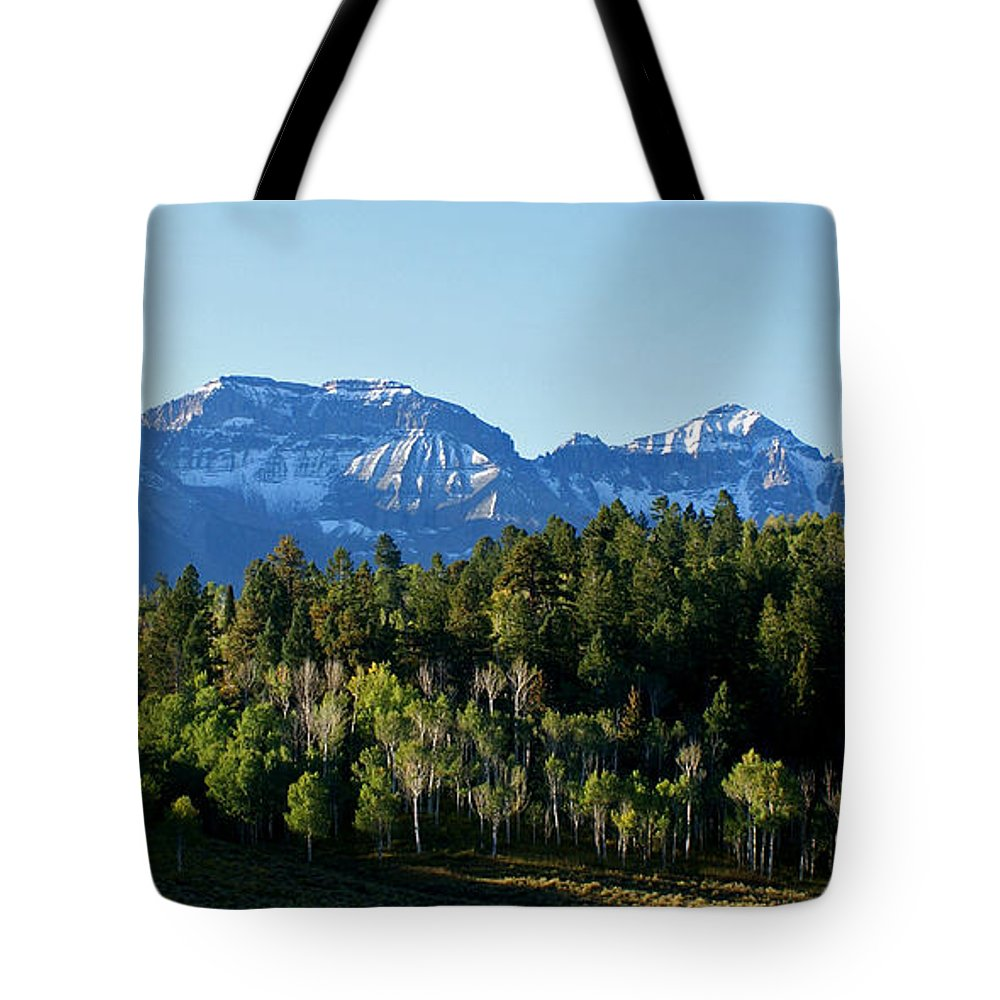 Art Tote Bag featuring the photograph San Juans Colorado by Ernie Echols