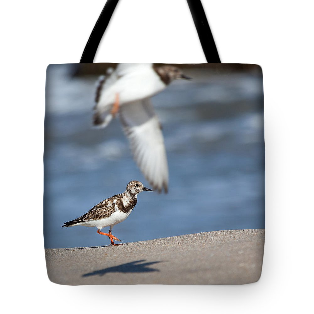 Sandpiper Tote Bag featuring the photograph Sandpipers by Michelle Constantine