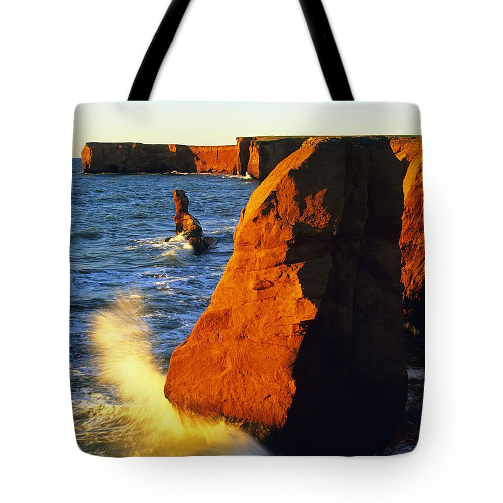 Cliff Tote Bag featuring the photograph Sandstone Cliffs And Ocean Surf, La by John Sylvester