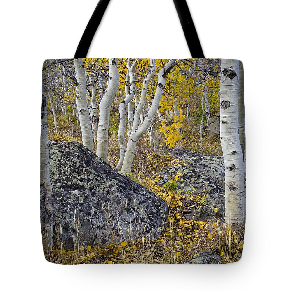 Nature Tote Bag featuring the photograph Scattered Gold by Idaho Scenic Images Linda Lantzy
