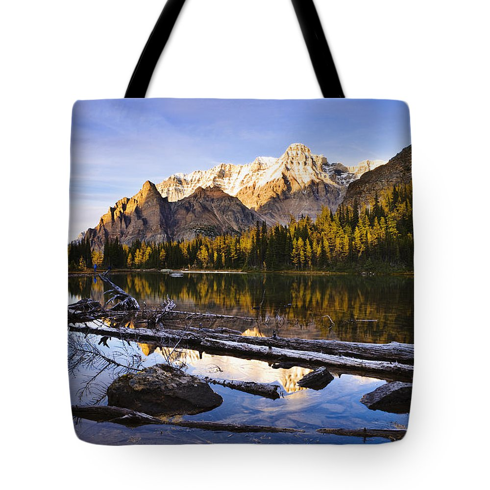 Distant Tote Bag featuring the photograph Schaffer Lake And Mount Huber by Yves Marcoux