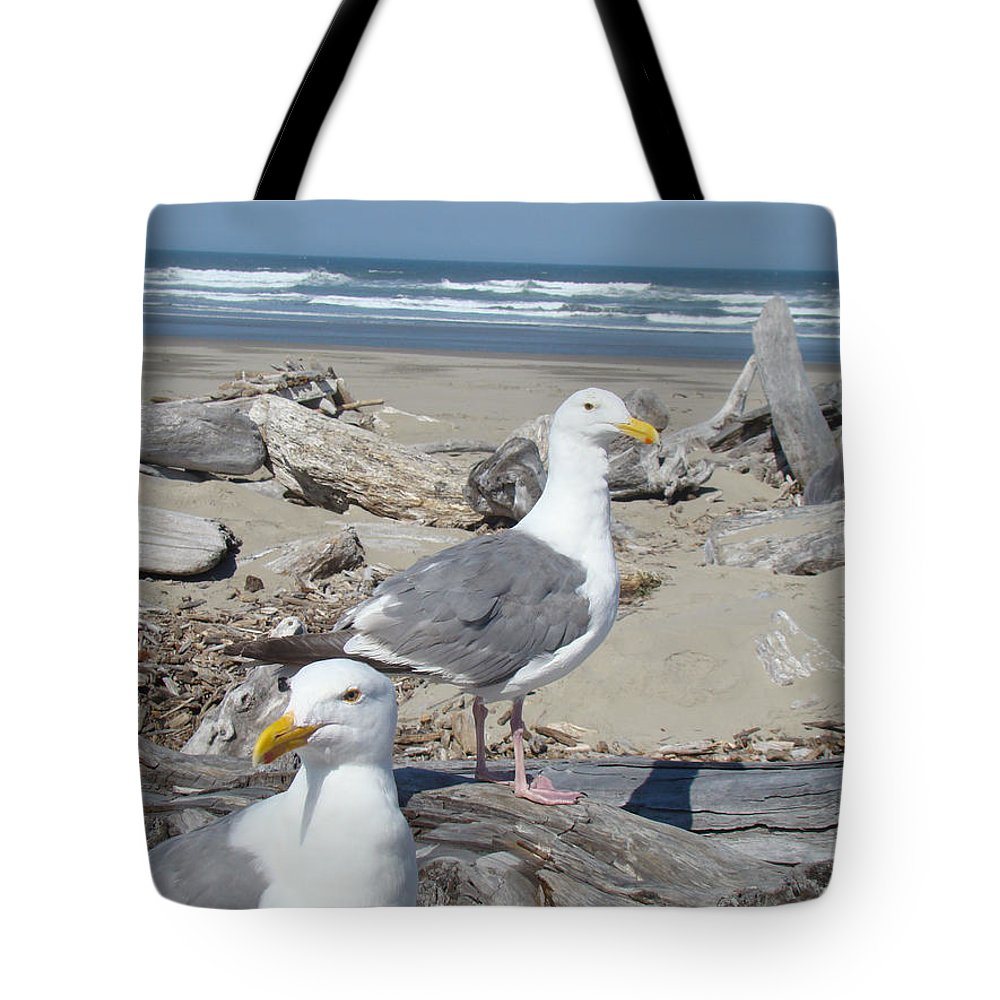 Seagull Tote Bag featuring the photograph Seagull Bird Art Prints Coastal Beach Bandon by Baslee Troutman