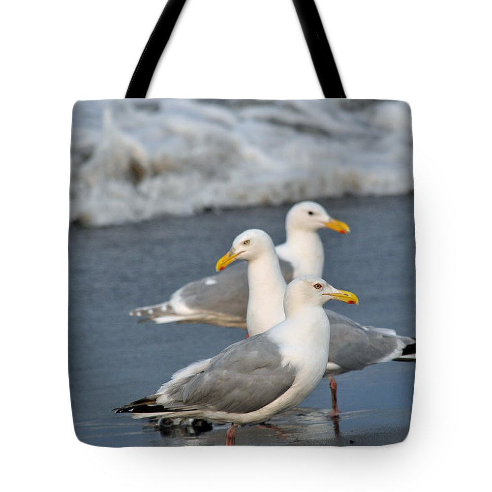 Seagulls Tote Bag featuring the photograph Seagull Fusion by Debra Miller