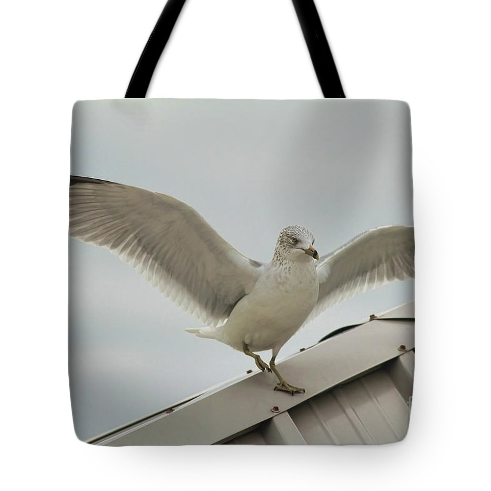 Seagull Tote Bag featuring the photograph Seagull With Character by Deborah Benoit