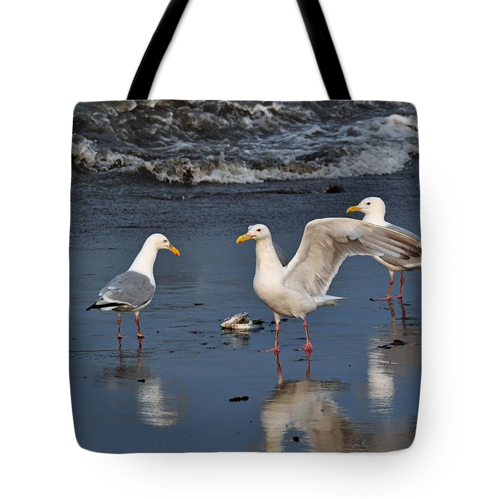 Seagulls Tote Bag featuring the photograph Seagulls Passion by Debra Miller