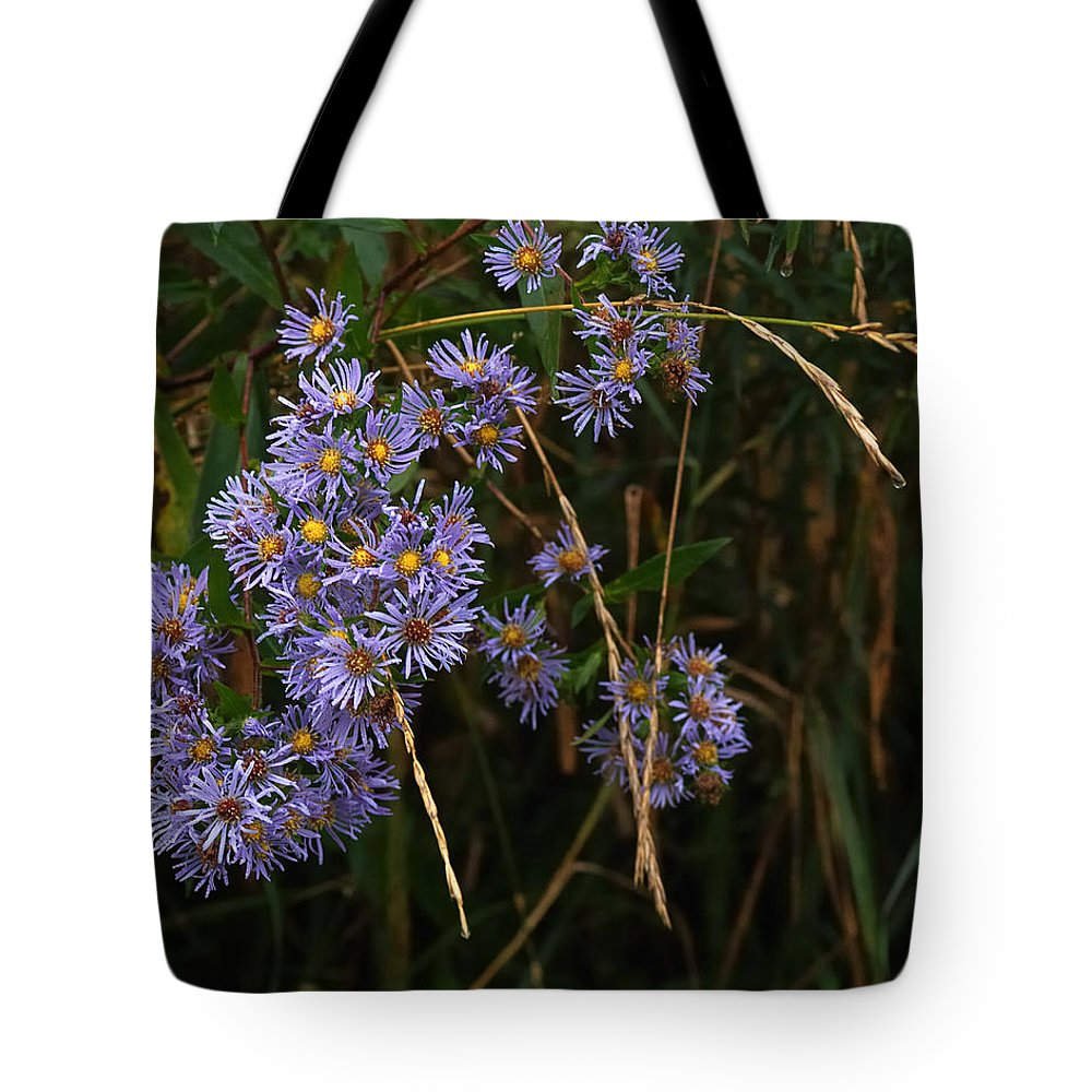 Nature Tote Bag featuring the photograph Seasonal Blues by Susan Capuano