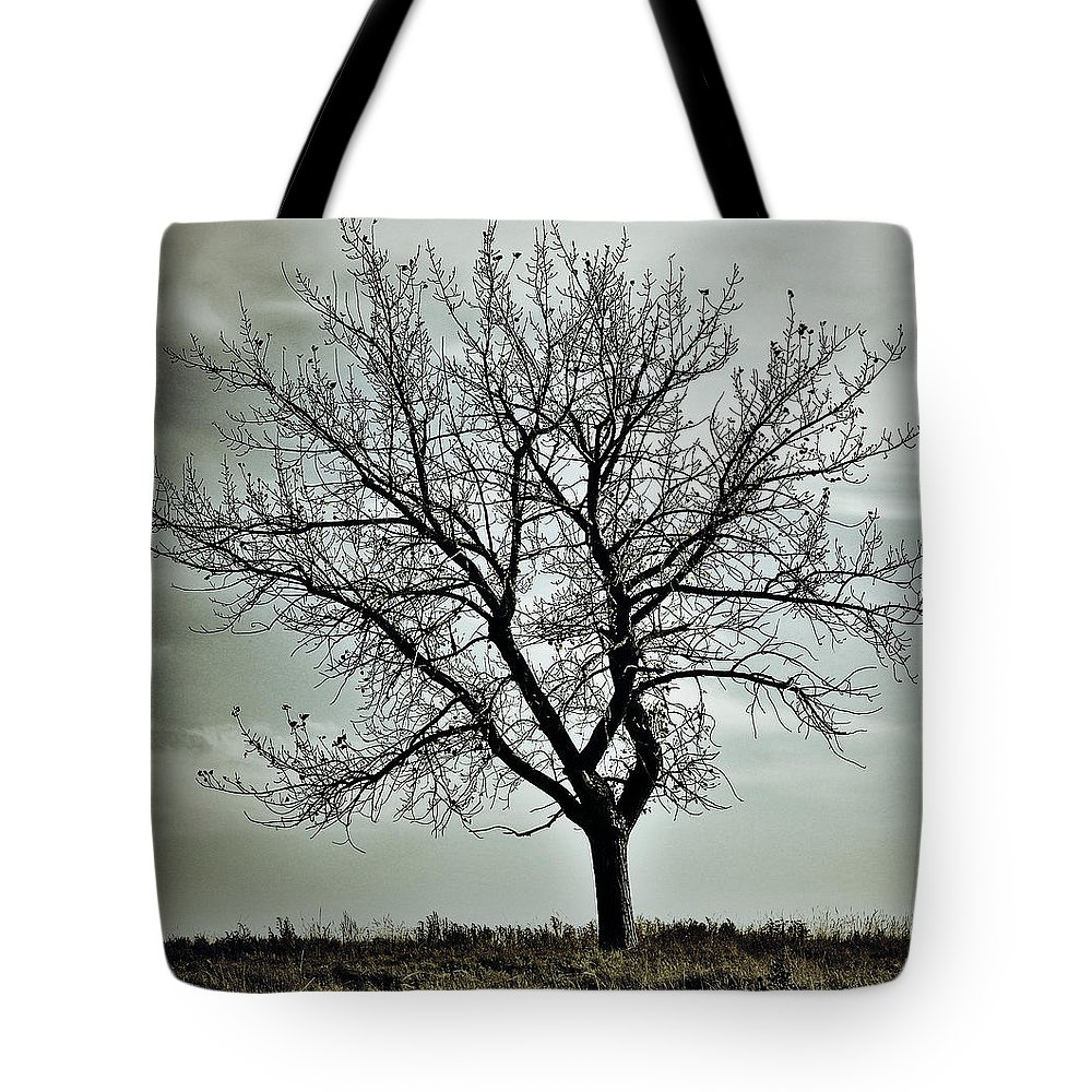 Street Photographer Tote Bag featuring the photograph Secrets Of The Roots by The Artist Project