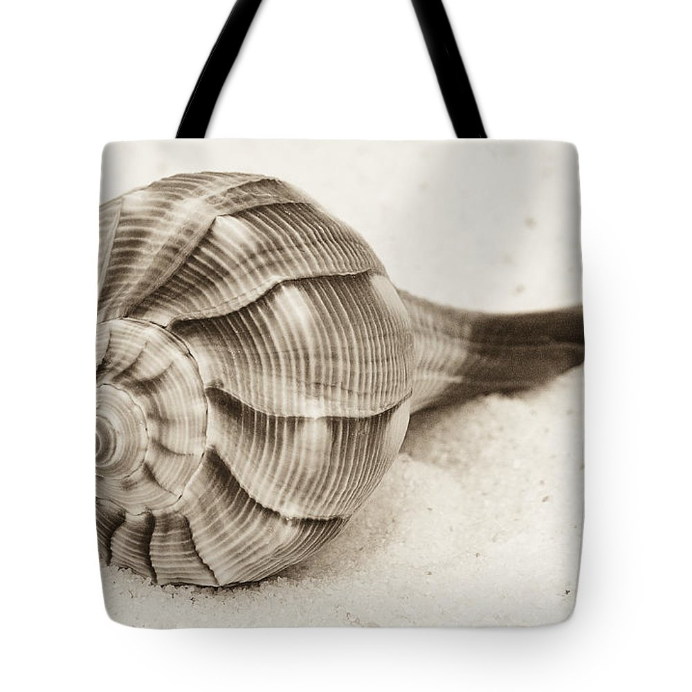 Shell Tote Bag featuring the photograph Sepia Shell by Jim And Emily Bush