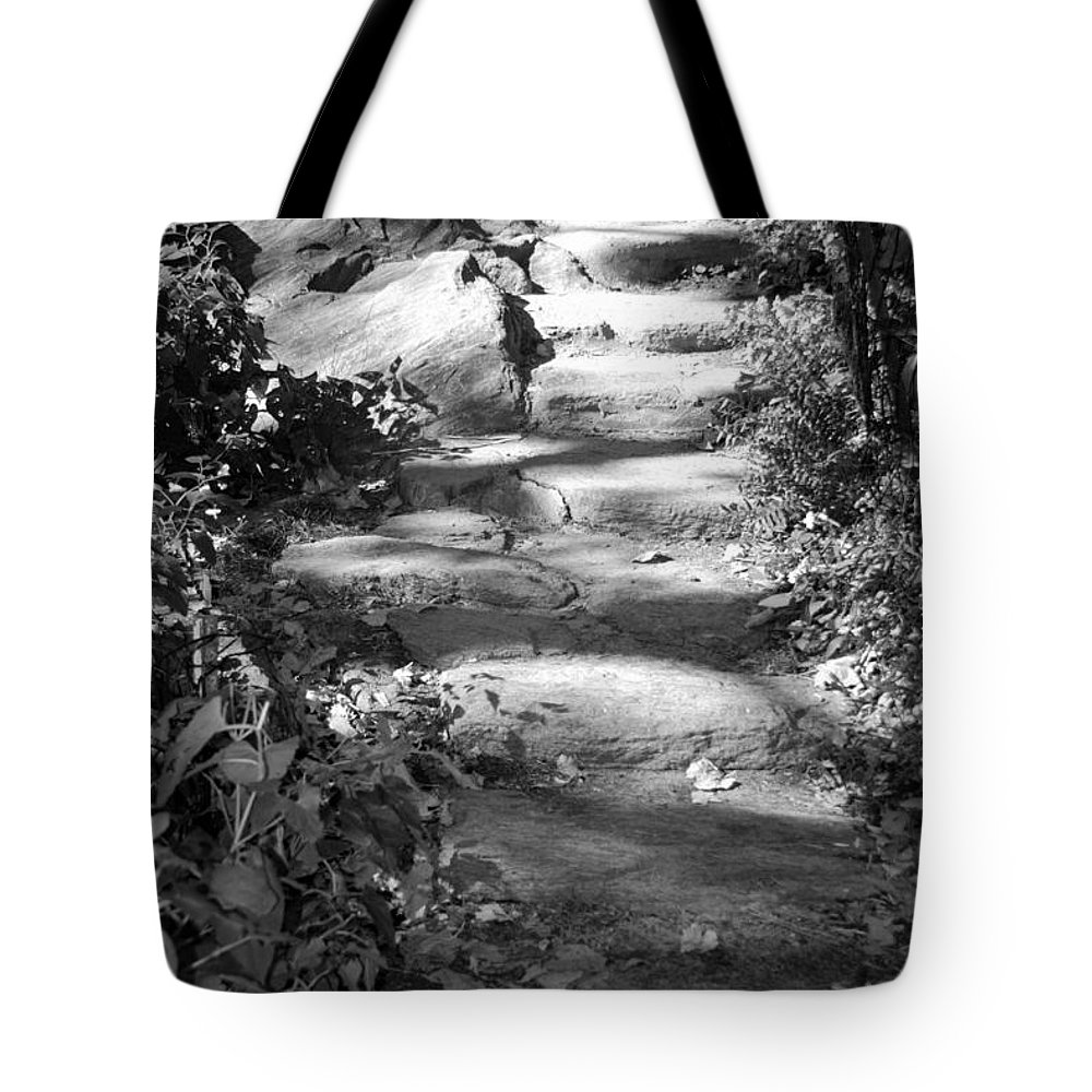 Central Park Tote Bag featuring the photograph Shaded Steps by Rob Hans