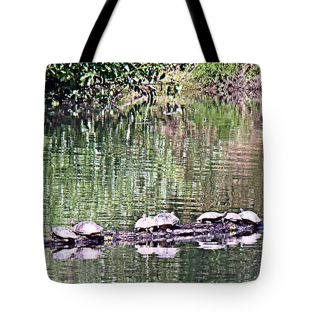 Turtles Tote Bag featuring the photograph Shell Game by Nick Kloepping
