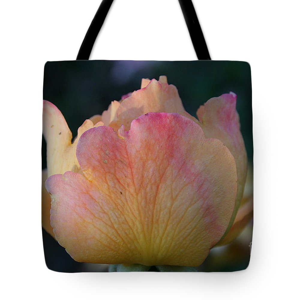 Flower Tote Bag featuring the photograph Sherbert Rose Bud by Susan Herber