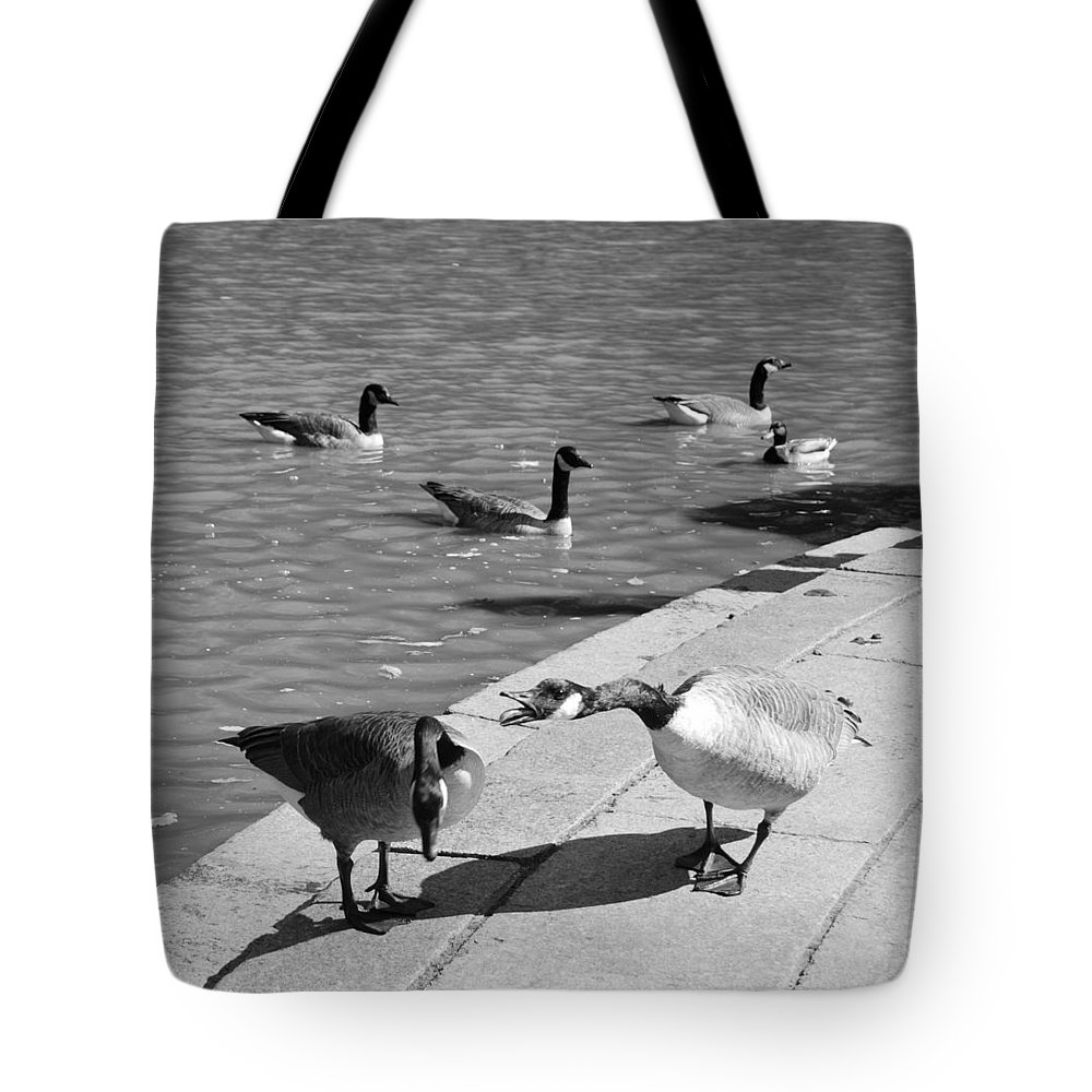 Central Park Tote Bag featuring the photograph Shut Uuuuppp by Rob Hans