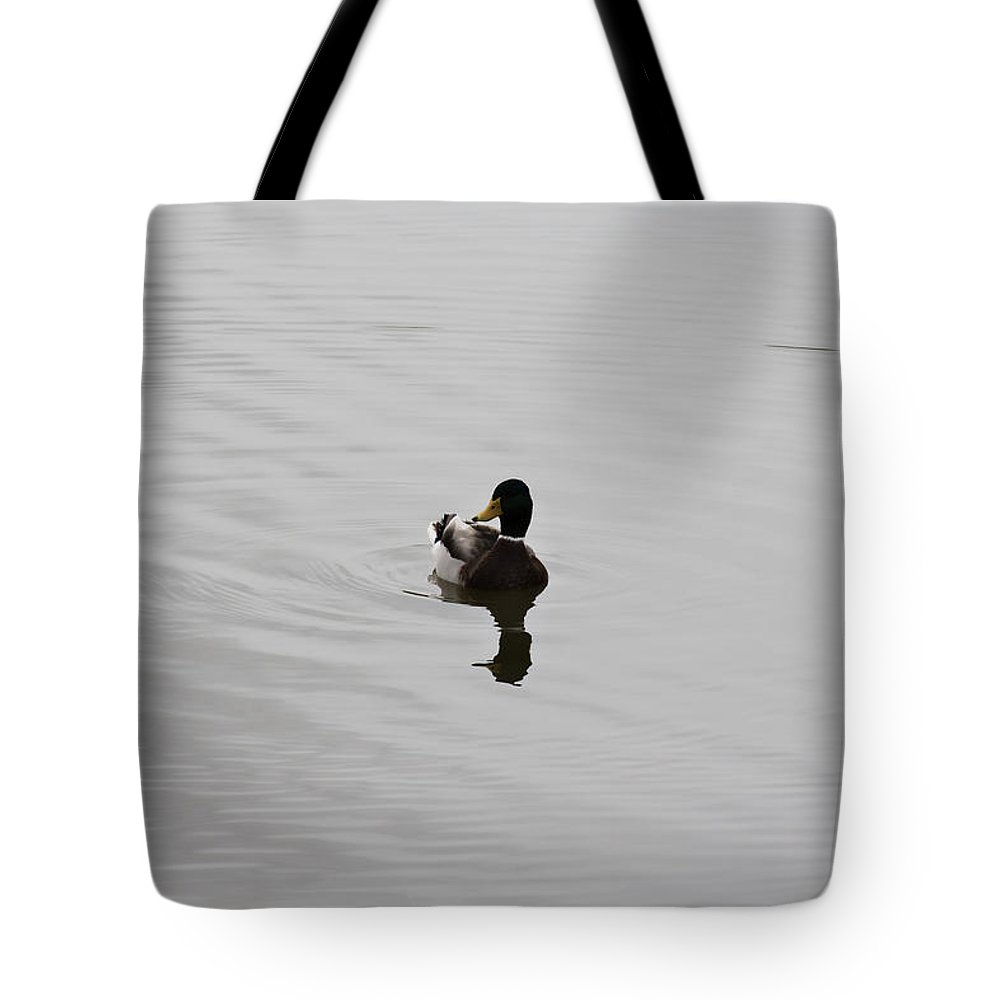 Duck On Lake Tote Bag featuring the photograph Silent Waters by Douglas Barnard