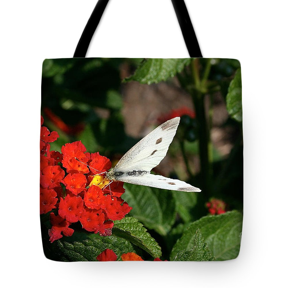 Outdoors Tote Bag featuring the photograph Silver Moth by Susan Herber