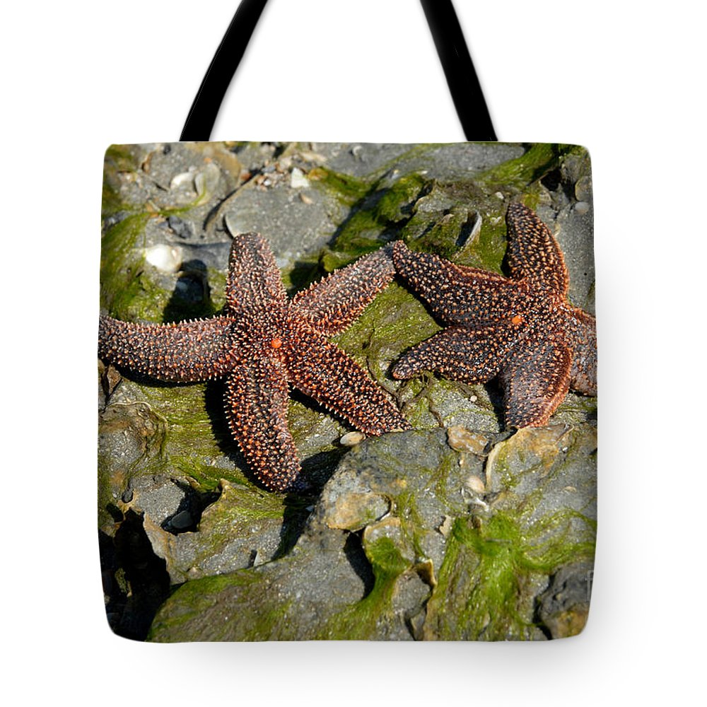 Starfish Tote Bag featuring the photograph Simply Starfish by Melody Jones