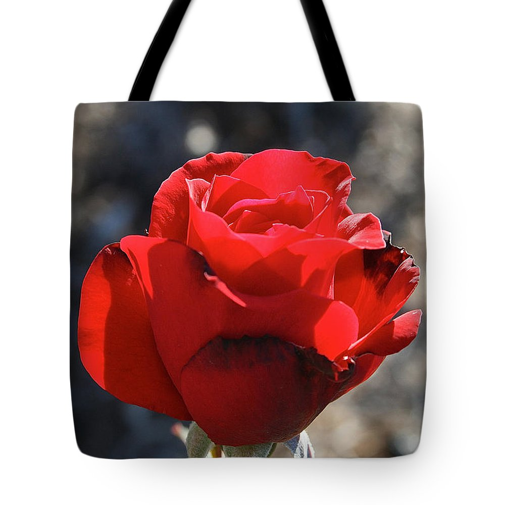 Flower Tote Bag featuring the photograph Singed by Susan Herber
