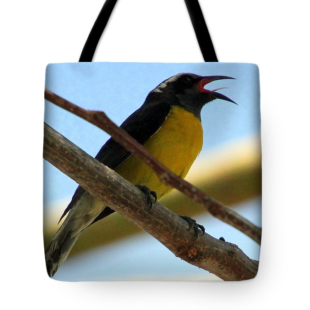 Bird Tote Bag featuring the photograph Singing My Heart Out by Laurel Talabere