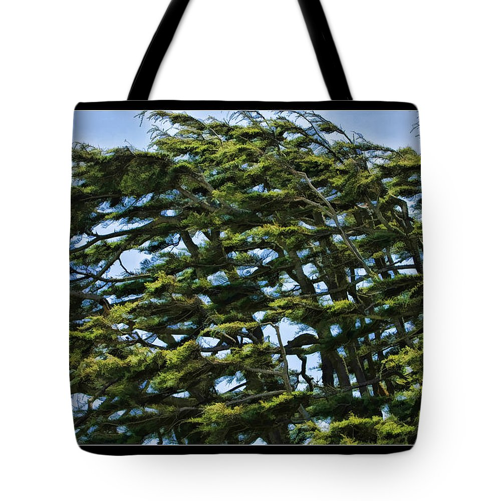 Art Photography Tote Bag featuring the photograph Slanted Branches by Blake Richards